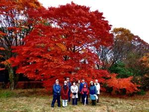 Happy Autumn season